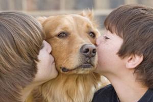 Efectos secundarios positivos de la propiedad de mascotas para niños