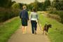 ¿Pueden nuestros perros ser la clave para encontrar al compañero perfecto?