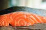 ¿Puede mi perro comer pescado crudo?