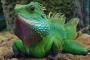 Los 10 datos divertidos sobre las iguanas