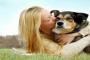 Abrazar a tu perro, no literalmente