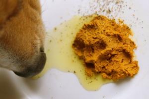 Suplementos nutricionales para perros.