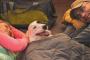 Consejos para prepararse para acampar con perros