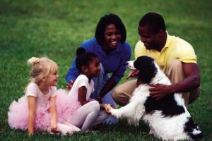 Criando un perro amigo de la gente