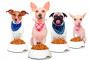 Comida para perros: una dieta equilibrada para su perro