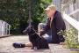 6 maneras sencillas de mantener a tu perro fresco durante los calurosos meses de verano sin aire acondicionado.
