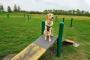 5 maneras de ahorrar dinero en el entrenamiento del perro