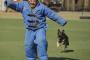 Entrar sin un mordisco: cómo ingresar al territorio de un perro