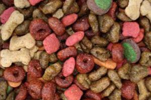 Cambiar la comida para perros es un proceso lento