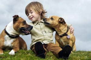 Enseñando a los niños a estar seguros alrededor de los perros