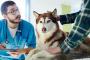 Enfermedad hepática en perros: síntomas, causas y tratamientos.