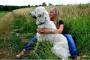 ¡No culpe al perro! 5 enfermedades que no puedes atrapar de tu perro
