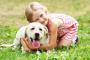 10 formas de garantizar encuentros seguros entre perros y personas