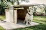 Mantener su casa y patio seguros para su mascota 11