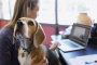 7 maneras de decir gracias a su increíble cuidador para perros.