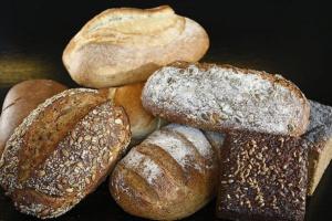 ¿Puede mi perro comer pan de trigo?