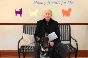Joe Biden adopta el perro de crianza
