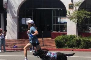 Cómo entrenar a tu perro en deportes de agilidad