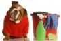 11 venenos para perros que tienes en tu casa