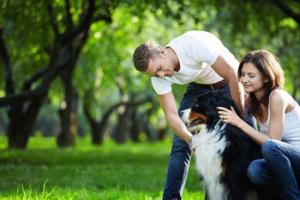 ¿Cuál estilo de crianza de perros?