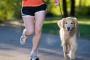 Consejos para correr con su perro