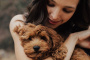 5 elementos esenciales para perros nuevos