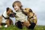 Los mejores perros para niños
