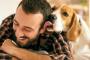 7 ventajas reales de ser dueño de un perro