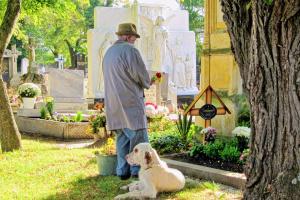 Incluyendo mascotas en los funerales