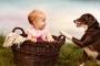 20 consejos para la convivencia de bebés y perros