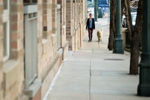 ¿Pueden las mascotas mejorar su ambiente de trabajo?