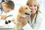 Medicina alternativa: Homeopatía para perros.