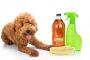 Vinagre de sidra de manzana como control de pulgas para perros