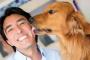 ¿Por qué los perros lamen a las personas?