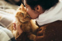 Vacaciones y separación, repercusión en gatos