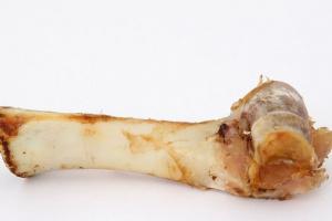 ¿Pueden los perros comer huesos de carne?