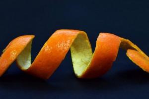 ¿Puede mi perro comer cáscaras de naranja?