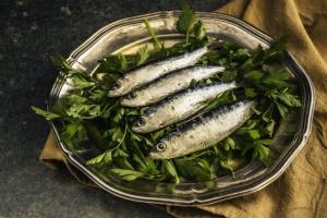 ¿Puede mi perro comer sardinas?