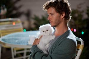 Convertir a mi esposo en un amante de los gatos