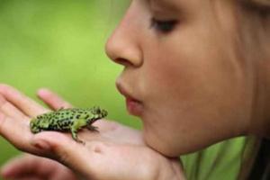 Manténgase saludable cerca de los reptiles y anfibios como mascota