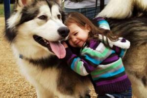 Impulsar las habilidades de lectura de los niños con compañía canina