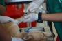 5 Mitos de esterilización y castración que no debes creer