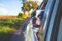 Cómo viajar con tu perro