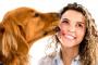 ¿Es arriesgado besar a tu perro?