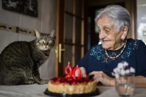 La esperanza de vida de los gatos