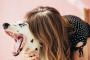 Cómo evitar que su perro ladre (consejos básicos)
