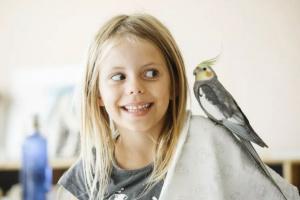 3 aves que son buena compañía para los niños