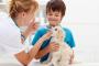 5 razones por las que su mascota debe ir al veterinario